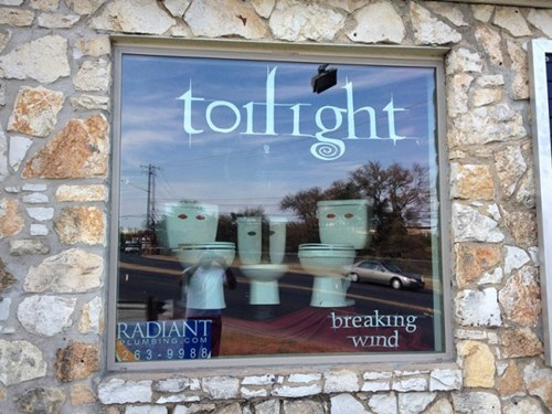 breaking dawn twilight toilets - 6847985664