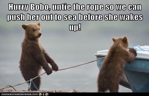 untie bears bats pushing prank hurry - 6848666624
