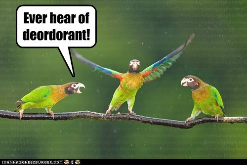 Ever hear of deordorant!