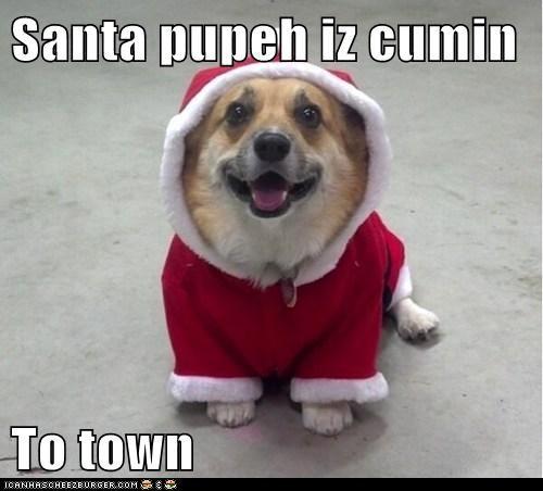 Santa pupeh iz cumin   To town