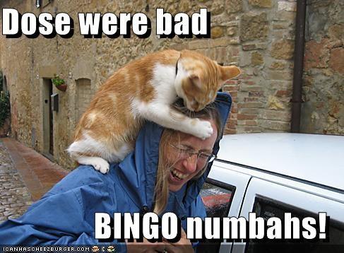 Dose Were Bad Bingo Numbahs Cheezburger Funny Memes Funny