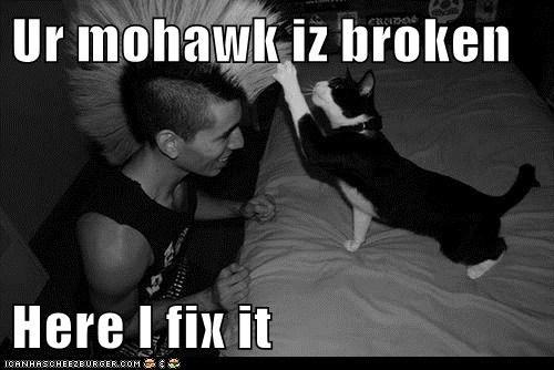 Ur mohawk iz broken  Here I fix it