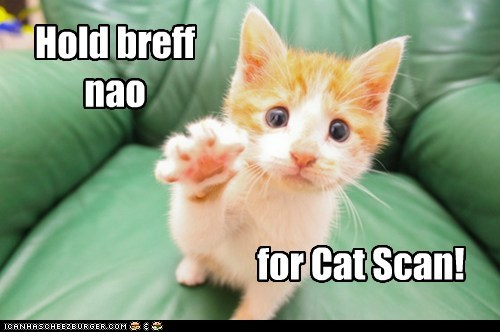Hold breff nao for Cat Scan!