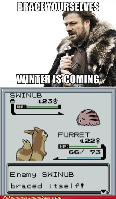 ability snow cloak brace yourselves winter swinub - 6850465536