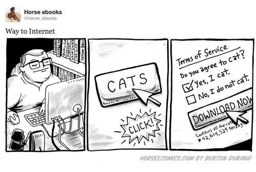 illustrations internet comics horse ebooks Cats horse e-comics - 6850775808