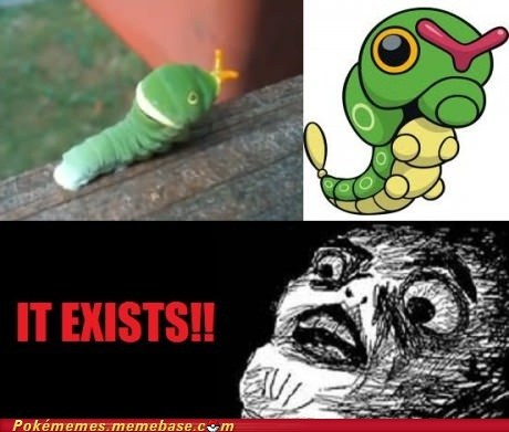caterpie IRL caterpillar - 6851025920