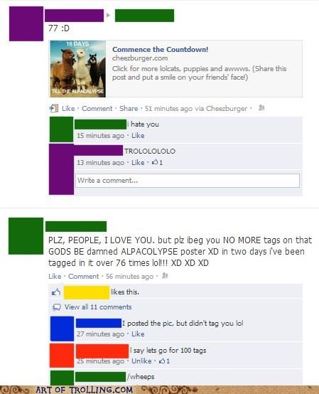 alpaca apocalypse facebook - 6851147264