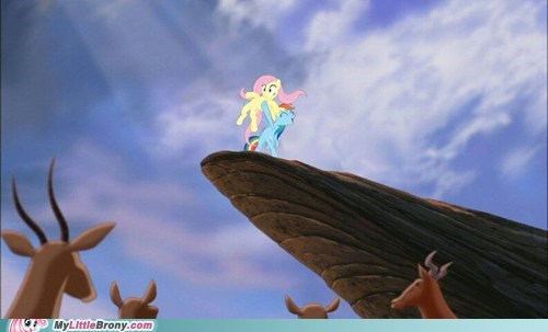 crossover,lion king,fluttershy