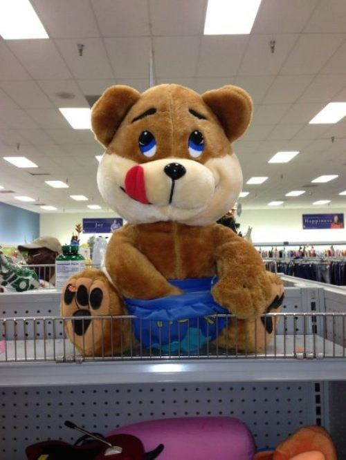 teddy bear toy fapping inapporpriate