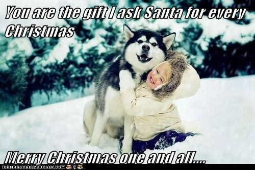 christmas dogs snow husky huskie holidays children