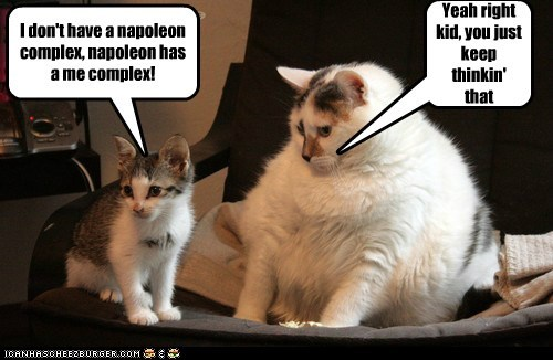 I don't have a napoleon complex, napoleon has a me complex! Yeah right kid, you just keep thinkin' that