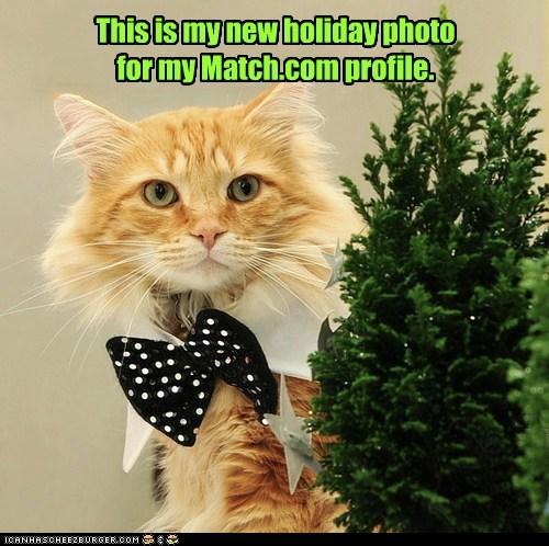 christmas romance captions holiday Cats Match.com - 6852884992