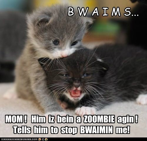 brains captions nom eat zombie mom Cats - 6853897216