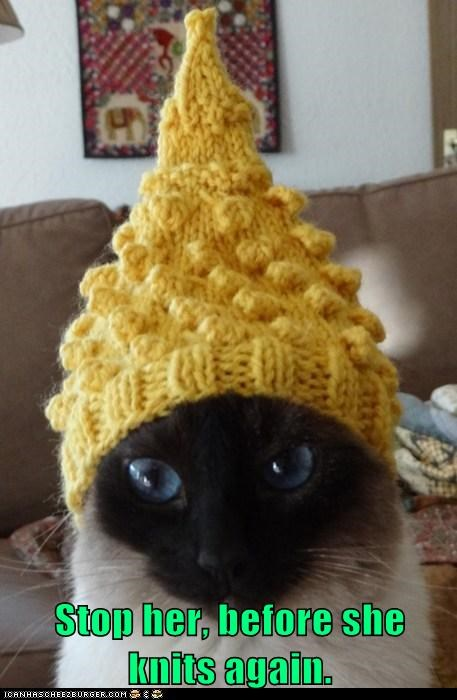captions stop Cats craft knit hat - 6853971968