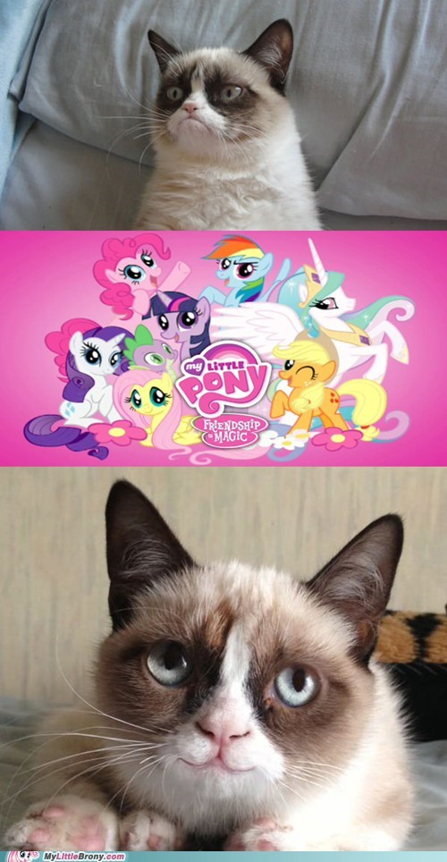 Grumpy Cat tard smile - 6853990656