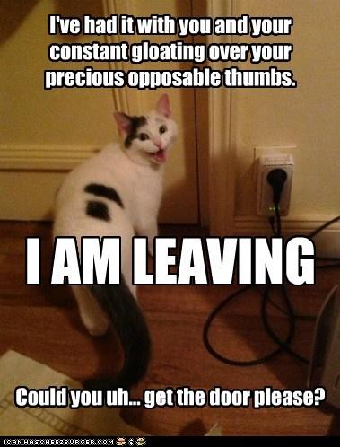 door leaving captions thumbs mad irony Cats - 6854147328