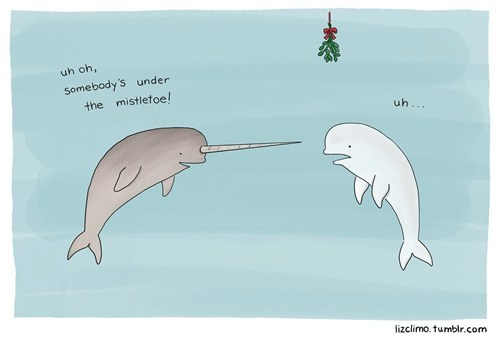 narwal,liz climo,kissing,mistletoe,whales,dating fails,g rated