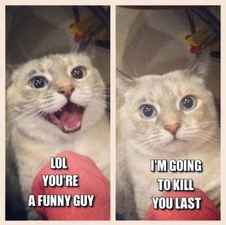 murder,murderous,captions,i will kill you last,nice,sweet,laughing,Cats