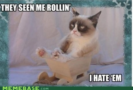 jingle memes,ridin dirty,Grumpy Cat
