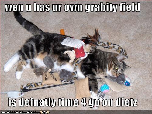 diet Gravity katamari lolcats - 685453568
