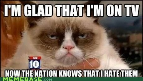 hate TV Grumpy Cat