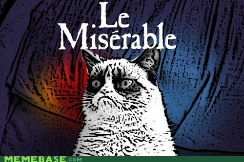 musicals,Grumpy Cat,Les Misérables