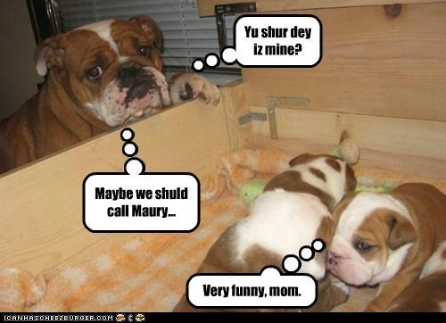 Yu shur dey iz mine? Maybe we shuld call Maury... Very funny, mom.