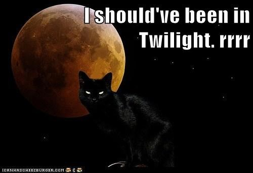 I should've been in Twilight. rrrr