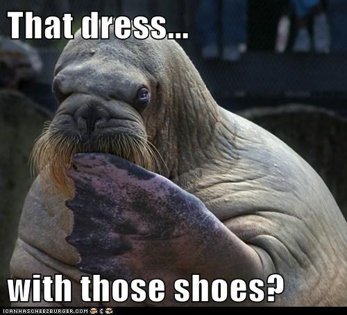 shoes fashion gross dress - 6856483584
