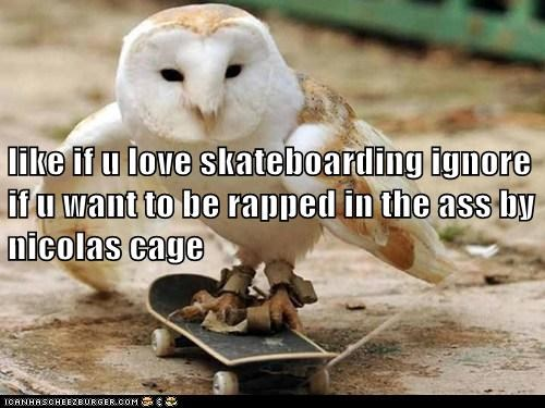 like if u love skateboarding ignore if u want to be rapped in the ass by nicolas cage