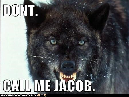 wolves Jacob don't call me twilight angry