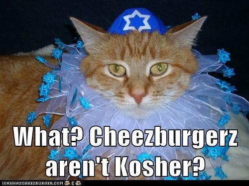 Cheezburger Image 6857997568