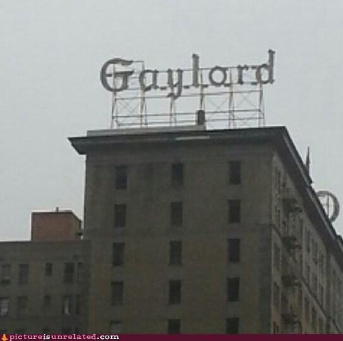 hotel gay - 6858003712