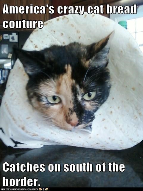 America's crazy cat bread couture Catches on south of the border.