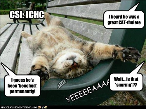 CSI: ICHC I heard he was a great CAT-thelete I guess he's been 'benched', permenantly! ZZZZT* Wait... is that *snoring*?? YEEEEEAAAA-
