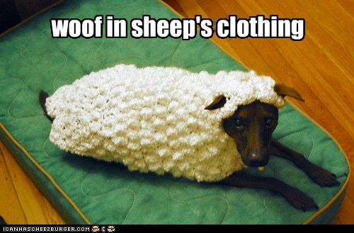 costume dogs sheep woof what breed - 6859347968