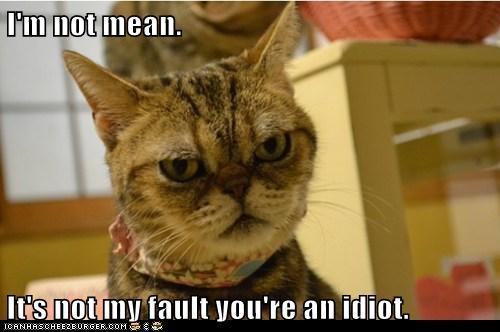 I'm not mean.  It's not my fault you're an idiot.
