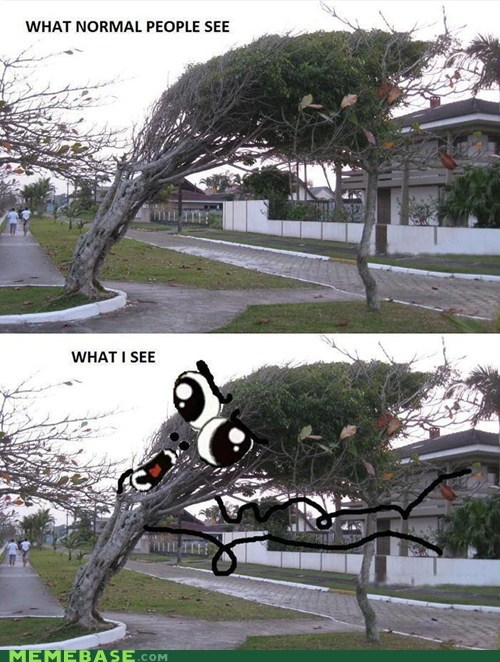 trees rage faces omg run