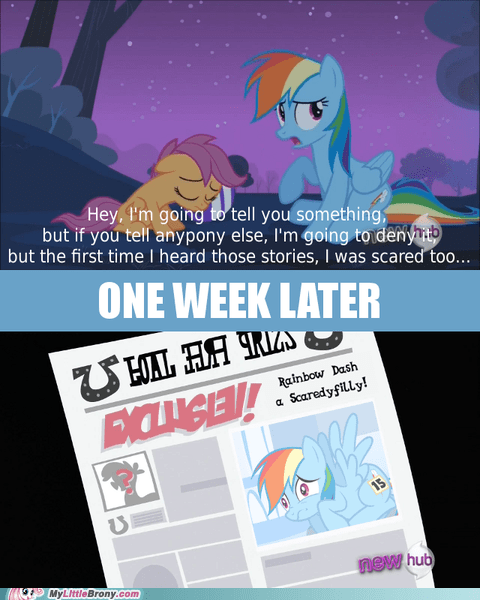 read all about it,snitch,Scootaloo,exclusive
