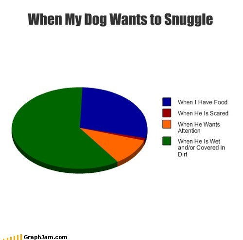 dogs pets cuddle mud Pie Chart - 6861496320