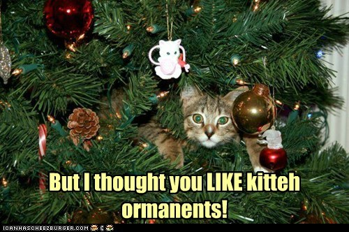 But I thought you LIKE kitteh ormanents!
