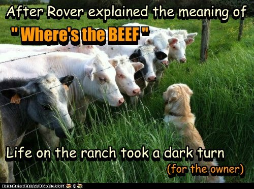 angry ranch Beef dark explanation dogs cows - 6863206144