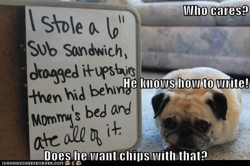 Cheezburger Image 6863249408