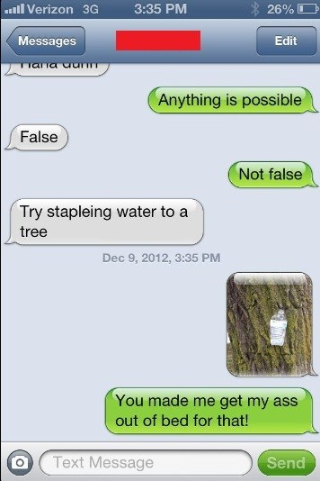 point proven,stapling,water,trees