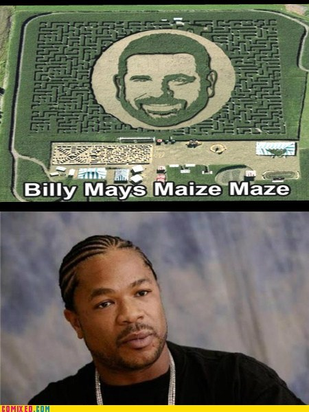 Xzibit,yo dawg,Billy Mays,maize,maze
