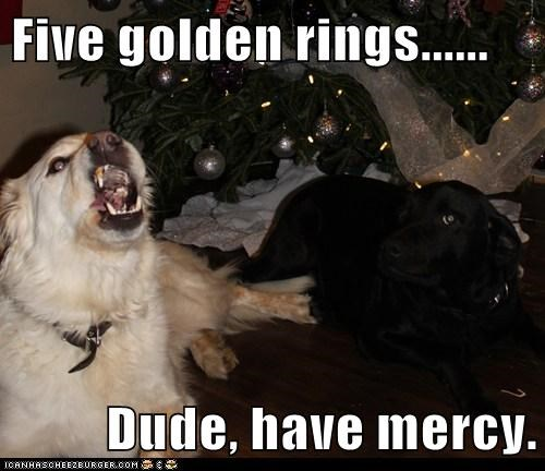 dogs,singing,song,christmas tree,christmas carol,what breed
