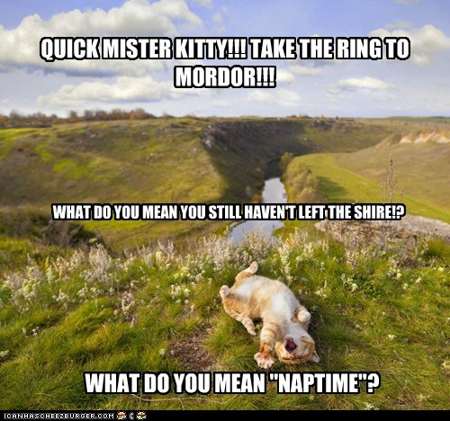 mordor,nap,shire,Lord of the Rings,captions,Cats,hobbit