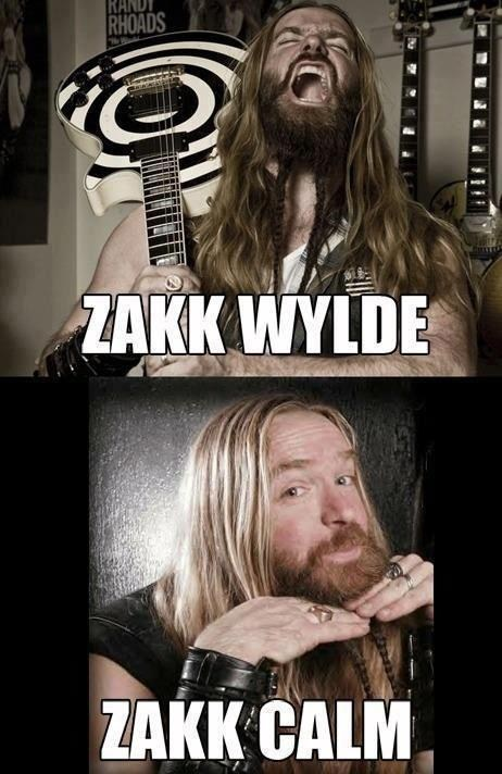 guitars puns zakk wylde Music FAILS g rated
