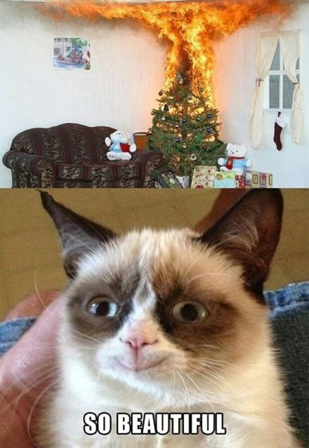 christmas tree,photoshop,grinch,Grumpy Cat,burn