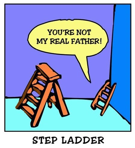 puns,comic,step ladder